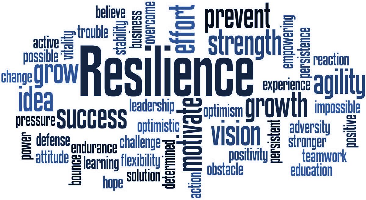 Enhancing Resilience